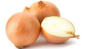 هل يعد البصل مضر لمرضى الكلى ؟