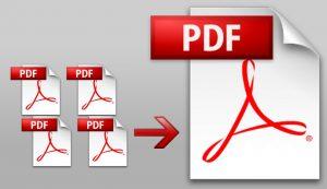 نماذج مسير رواتب عمال pdf
