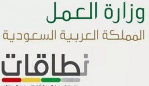 كم ممكن يحسب السعودي في نطاقات شرح شامل